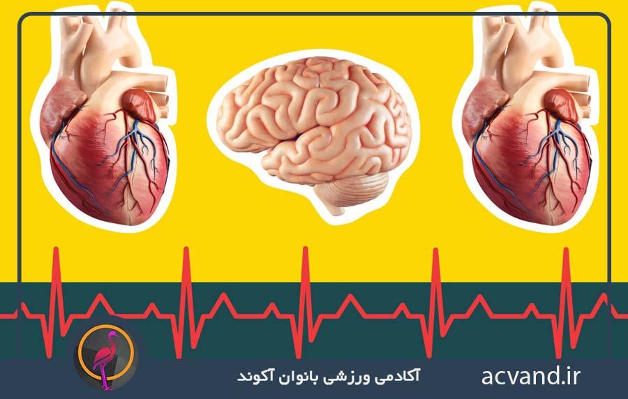 بیماری قلبی، سکته مغزی و دیابت