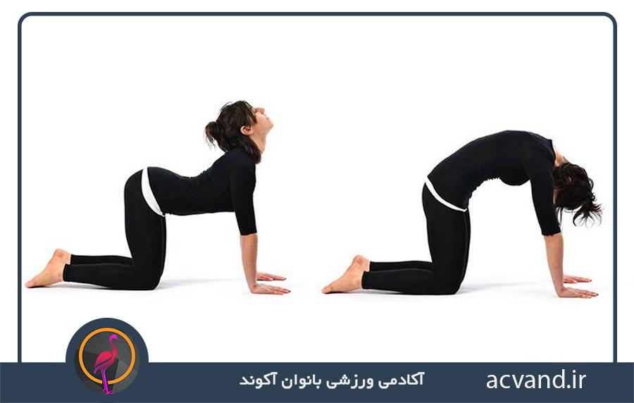 تمرینات یوگا برای بهبود کمر درد